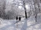 2017-12-01 Příchod zimy